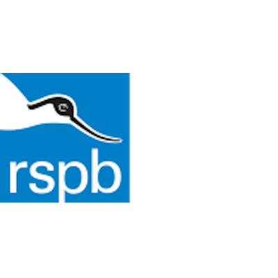 ​RSPB (Royal Society for the Protection of Birds)​